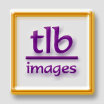 tlb images @ tlbtlb.com: portraits using photoshop and painter
